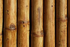 Free Texture Of Bamboo Trees Close-up Royalty Free Stock Photos - 116145568