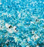 Texture Of Flowers Stock Photo