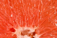 Texture Of Grapefruit Royalty Free Stock Photos