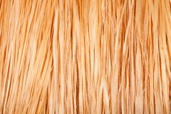 Texture Of Grass Skirt Royalty Free Stock Image