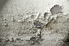 Free Texture Of Old Cracked Concrete Wall Stock Photography - 19160872