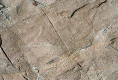 Texture Of Stone 24 Stock Image