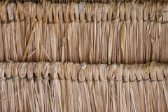 Texture Of Thatch Roof Royalty Free Stock Photography