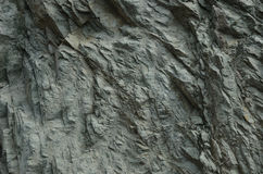 Texture Of The Rock Vertical Wall Royalty Free Stock Photo