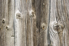 Texture of old and ancient wood Royalty Free Stock Image