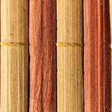 Texture of old bamboo branches with threads. Stock Image
