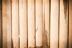 Texture of old bamboo Stock Image
