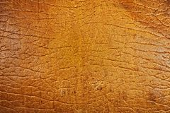Texture of old beige leather Royalty Free Stock Photos