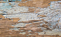 Texture of the old board close-up. Stock Photography