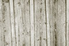 Texture of old boards with exfoliate coloring Stock Photography