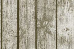 Texture old boards with peeling of gray color Royalty Free Stock Photos