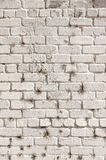 Texture of old brick wall Royalty Free Stock Photos
