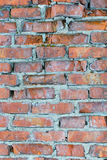 Texture of old brick wall. Royalty Free Stock Images