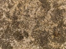 Texture of old concrete. Details of the color and texture of old concrete Stock Photography