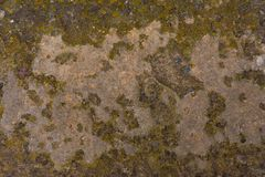 Old concrete with decal Stock Images