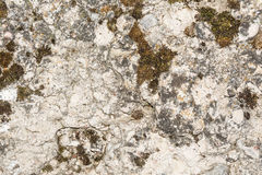 Texture of the old concrete wall with a damaged surface and small cracks Royalty Free Stock Images