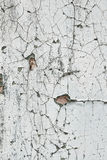 Texture of old cracked paint Royalty Free Stock Image