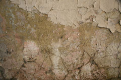 Texture of old cracked plaster painted wall. Texture of old aged shabby cracked painted gray green beige decay wall background Royalty Free Stock Photo