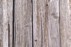 Texture of the old decayed wooden boards Royalty Free Stock Images