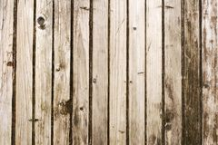 Texture of old door Stock Photos