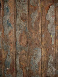 Texture of the old floor. Worn floorboards, exfoliated paint Stock Images