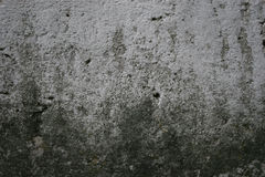 Texture of old gray cement plaster wall. Texture of old gray cement plaster dirty lichen wall surface background Royalty Free Stock Photo
