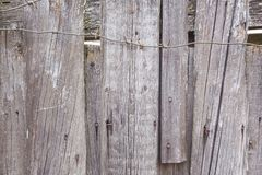 Texture of old gray fence and barbed wire stock image