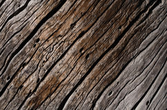 The texture is an old gray, rotten wooden board with deep wavy cracks Stock Photography