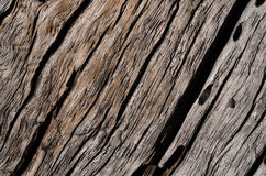 The texture is an old gray, rotten wooden board with large cracks Royalty Free Stock Photos
