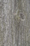 Texture of old gray wood, vertical Royalty Free Stock Photography