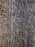Texture of old gray wooden boards at sunset day stock photos