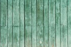 Texture of old green wooden boards background stock photography