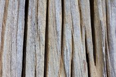 Texture old groove timber Stock Photography