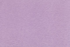 Texture of old light violet paper closeup. Structure of a dense cardboard. The lavender background. Stock Photos