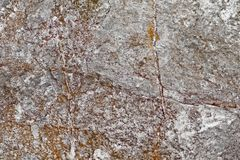 Texture of the old natural stone close up stock image