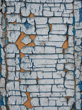 Texture of old paint. Texture of the old cracked paint Royalty Free Stock Photography