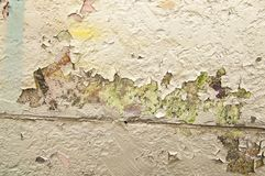 Texture of old painted wall stock image