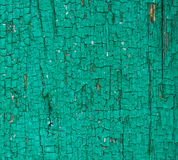 Texture of old pine oil painted boards Royalty Free Stock Images