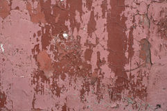 Texture of old pink stucco wall Stock Image