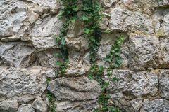 Texture of old rock wall for background, Medieval stone wall.  royalty free stock photography