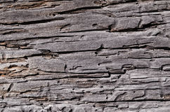 Old rotten cracked wooden board Stock Image