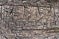Texture of old rugged boards Stock Photos