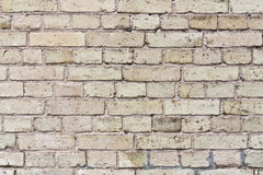 Texture of beige brick wall Royalty Free Stock Photos