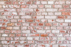 Texture of old rustic brick wall painted with white Stock Photography