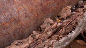Texture of a old rusty pipe. Background texture stock video