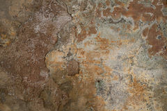 Texture of old shabby moldy wall. Texture of old rusty shabby moldy wall surface background Stock Images