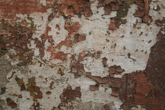 Texture of old shabby painted wall. Texture of old aged shabby painted gray brown wall background Stock Photos