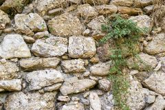 Texture old stone wall of ancient fortress Royalty Free Stock Images