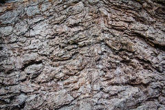 Texture of old stone wall. Nature background Royalty Free Stock Photos