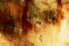 Texture of old stucco wall. Texture and background, old plaster walls Royalty Free Stock Image